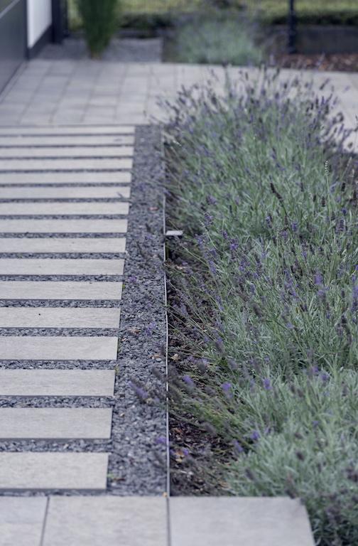 Skulpturale Bepflanzung: Büsche und Sträucher setzen optische Akzente unterschiedlich hohe Bepflanzung wahrt die Spannung rund um das Haus