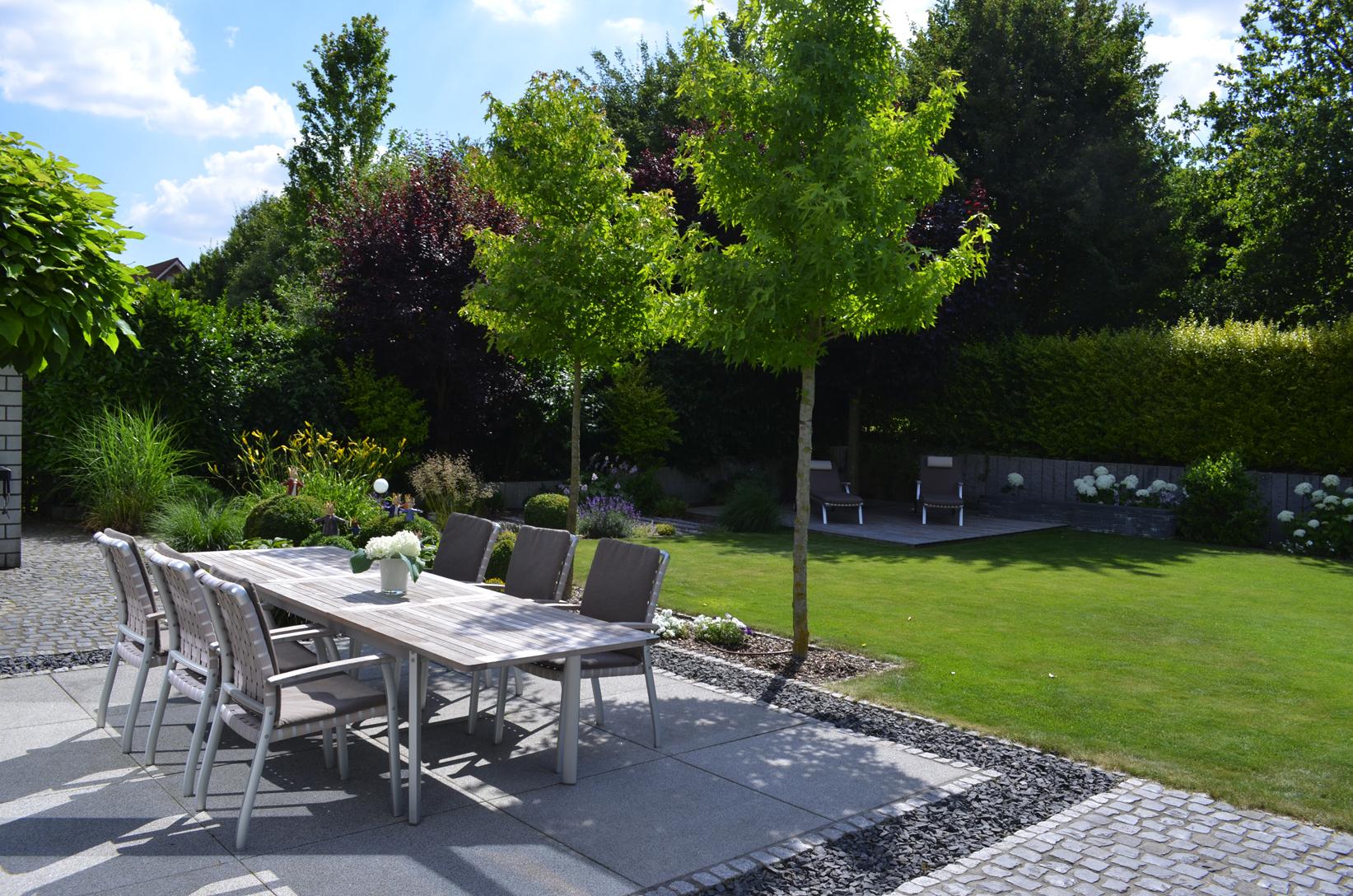 Kleinkronige Amberbäume spenden natürlichen Schatten für die Terrasse