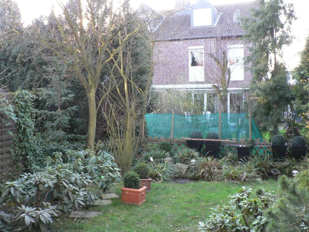 Vorher: Das Rasenmähen nervt, und den teilweise schönen Pflanzen fehlt die Kulisse